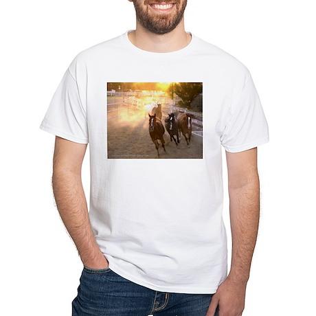 3 blazes White T-Shirt