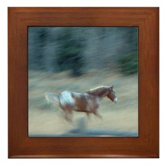 Painted Pony Framed Tile