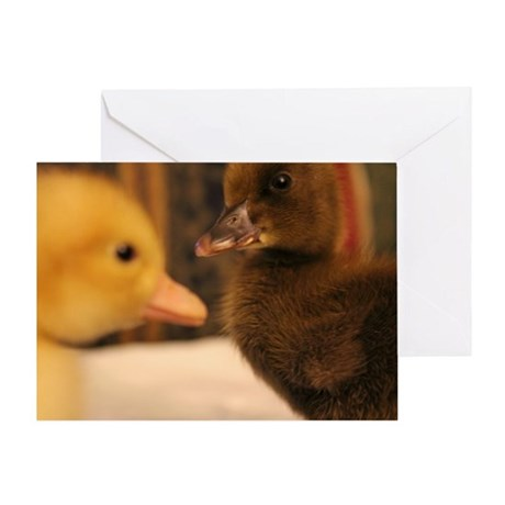 Adorable Ducklings Greeting Card