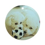 SOPHIE AND MARCO SOCCER ORNAMENT (ROUND)