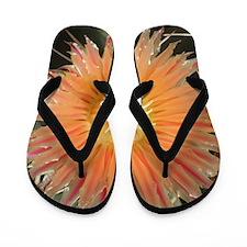 Cactus001 Flip Flops