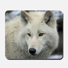 Polarwolf001 Mousepad