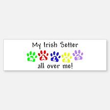 Irish Setter Walks Bumper Bumper Bumper Sticker