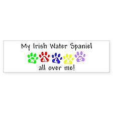 Irish Water Spaniel Walks Bumper Bumper Sticker