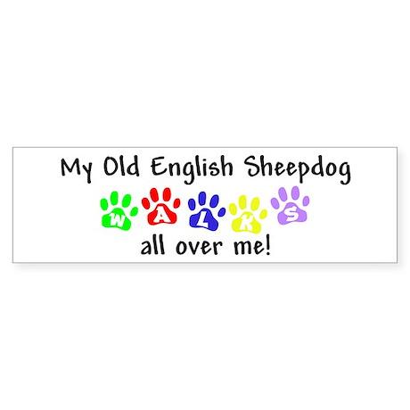 Old English Sheepdog Walks Bumper Sticker