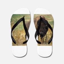 American buffalo Flip Flops