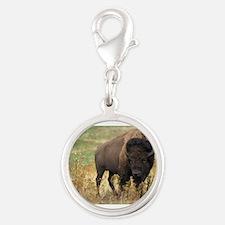 American buffalo Charms