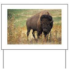 American buffalo Yard Sign