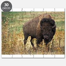 American buffalo Puzzle