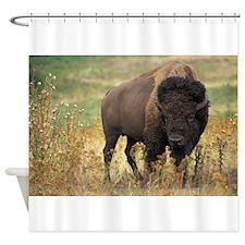 American buffalo Shower Curtain