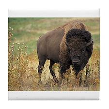American buffalo Tile Coaster