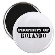 Property of Rolando Magnet