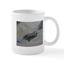American Alligator Mug