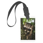 Baby Raccoon Large Luggage Tag