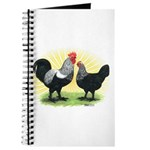 Iowa Blue Chickens Journal