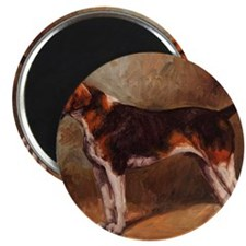 English Foxhound Magnet