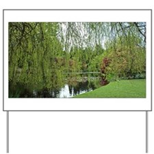 Spring soft, green willow tree by the pond. Van Du