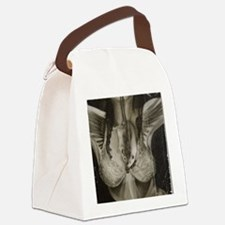 Appetite Of The Eagle Canvas Lunch Bag