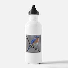 Eastern Bluebird Water Bottle