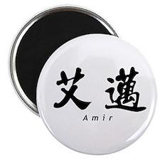 Amir Magnet