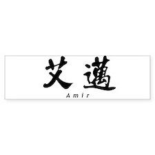 Amir Bumper Car Sticker