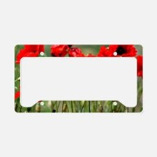 Poppy-Red Poppies License Plate Holder