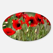 Poppy-Red Poppies Decal