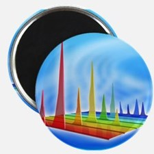 Chromatogram, 3D View - Magnets