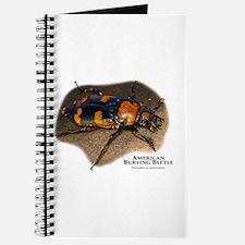 American Burying Beetle Journal