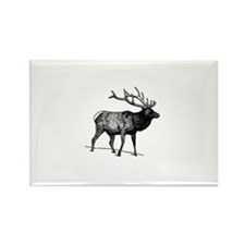 Elk - Wapiti (line art) Magnets