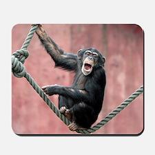 Chimpanzee001 Mousepad