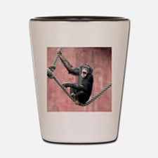 Chimpanzee001 Shot Glass