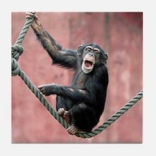 Chimpanzee001 Tile Coaster