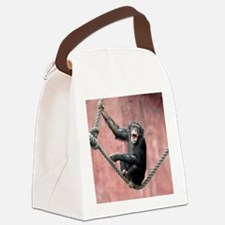 Chimpanzee001 Canvas Lunch Bag