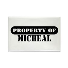 Property of Micheal Rectangle Magnet