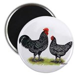 Java Rooster and Hen Magnet