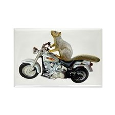 Motorcycle Squirrel Rectangle Magnet
