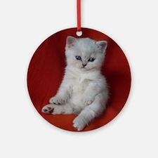 British Shorthair kitten Round Ornament