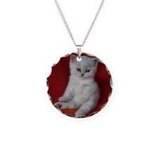 British Shorthair kitten Necklace