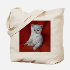 British Shorthair kitten Tote Bag