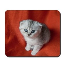 Scottish Fold Mousepad
