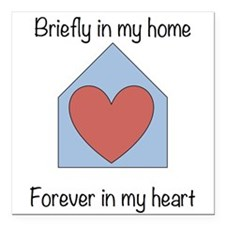 """Briefly in my home Square Car Magnet 3"""" x 3&q"""