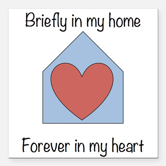 "Briefly in my home Square Car Magnet 3"" x 3&q"
