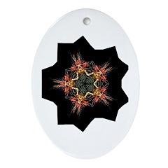 fireworks Oval Ornament