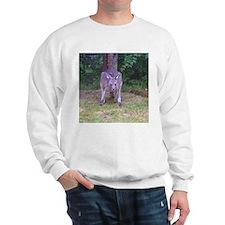 wallaby Sweatshirt