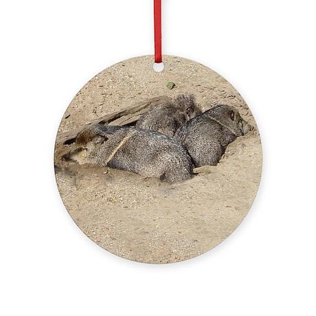 peccaries Ornament (Round)