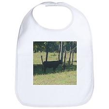 angus cow & calf Bib