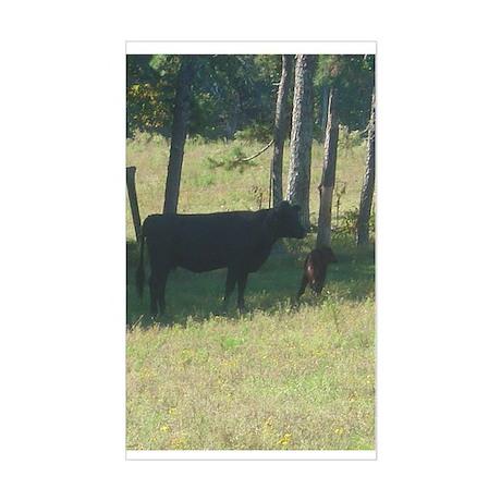 angus cow & calf Rectangle Sticker
