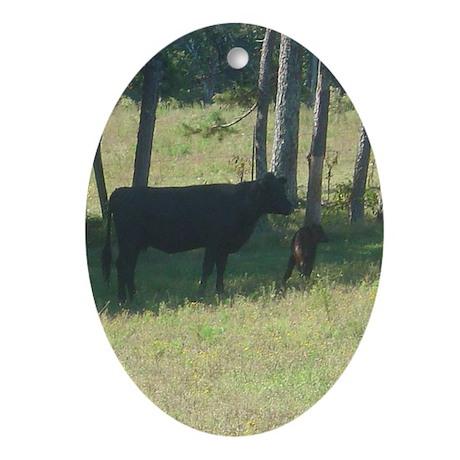 angus cow & calf Oval Ornament