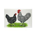 Marans Rooster and Hen Rectangle Magnet (10 pack)